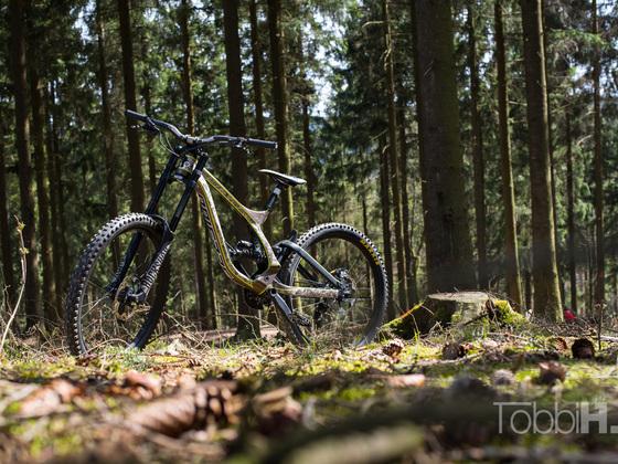 Mein DH Bike